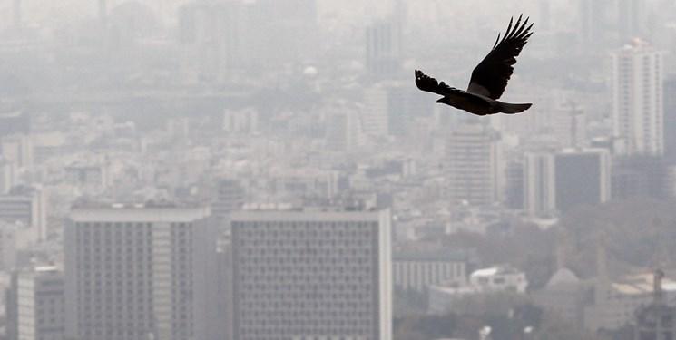 آلودگی هوای انگلیس در وضعیت اورژانس واقع شده است