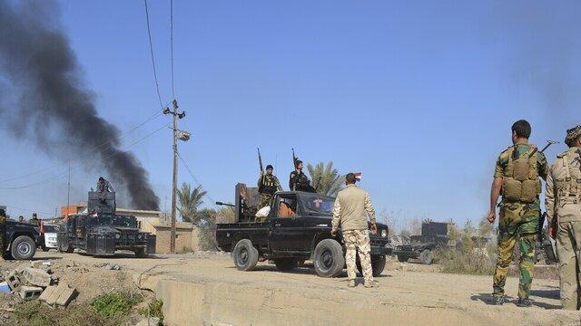 2 گاو در دیالی عراق منفجر شدند