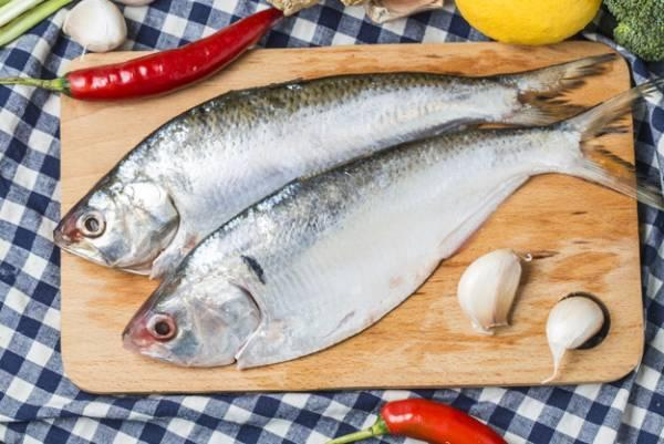 تشخیص ماهی پرورشی خوب از بد