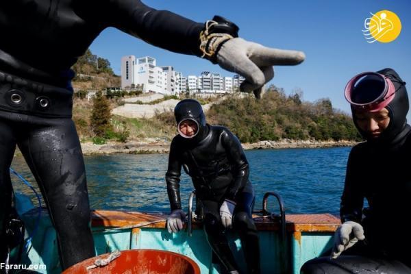 (تصاویر) غواص زنان کره ای بدون کپسول اکسیژن